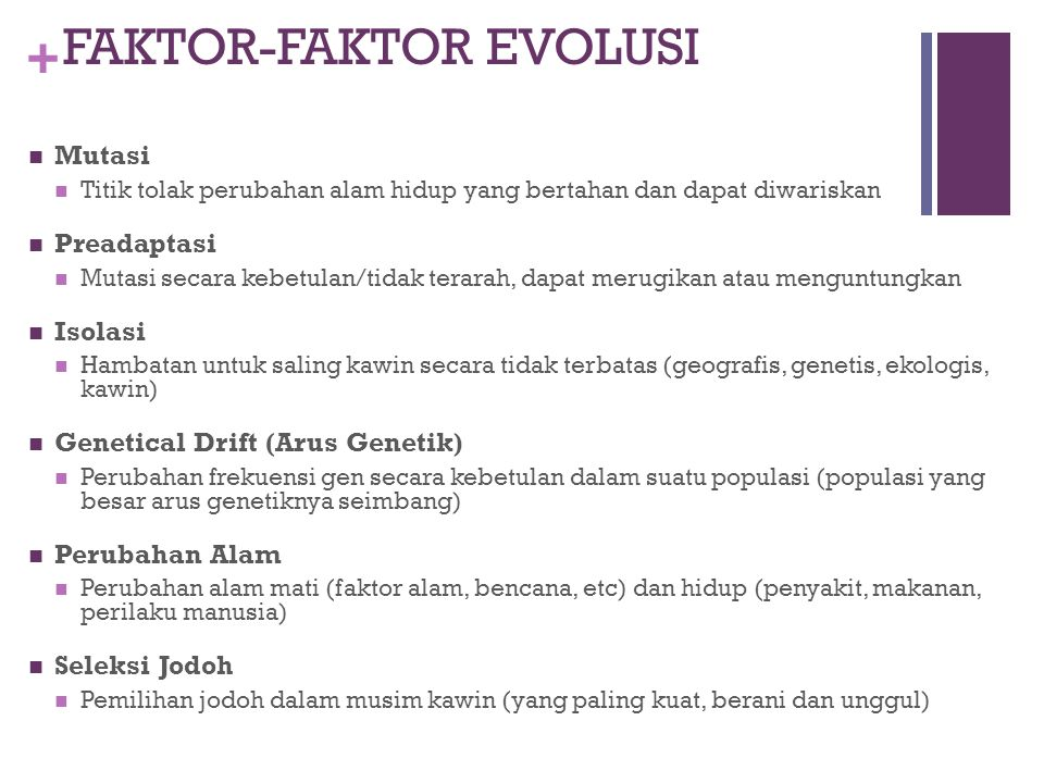 FAKTOR-FAKTOR EVOLUSI