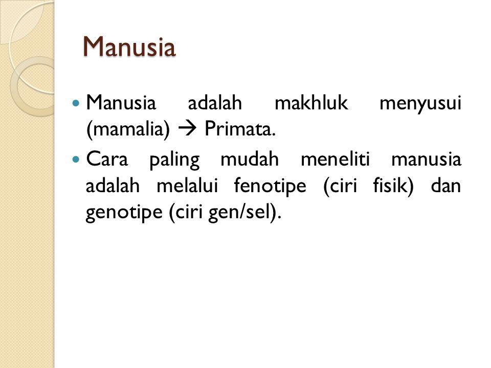Manusia Manusia adalah makhluk menyusui (mamalia)  Primata.