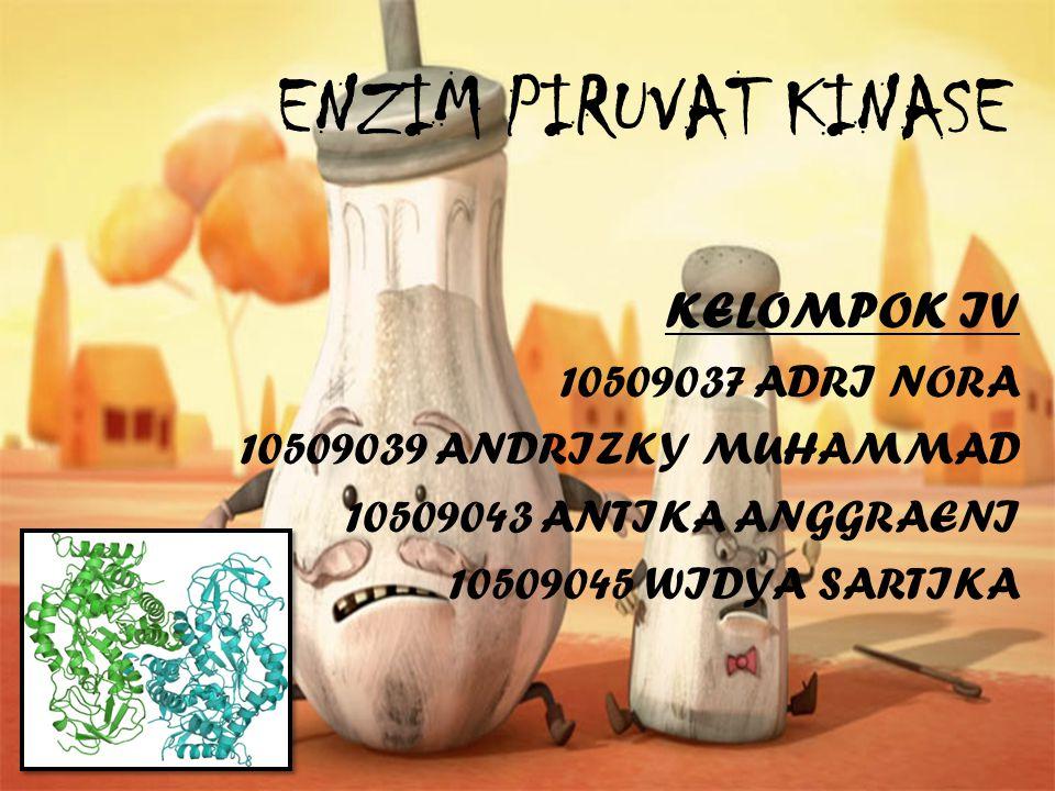 ENZIM PIRUVAT KINASE KELOMPOK IV 10509037 ADRI NORA
