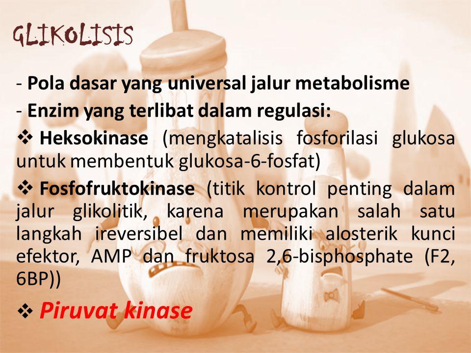 GLIKOLISIS Pola dasar yang universal jalur metabolisme