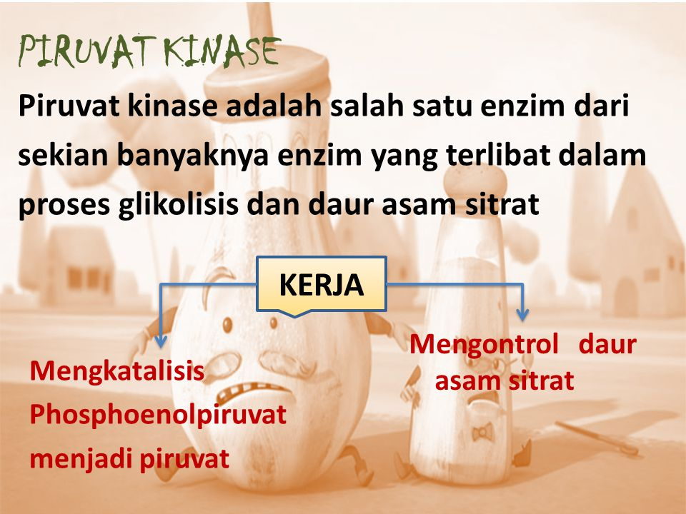 PIRUVAT KINASE Piruvat kinase adalah salah satu enzim dari