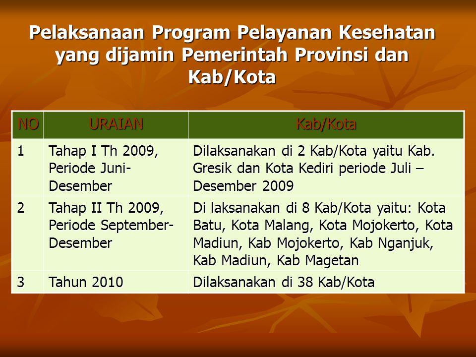 Pelaksanaan Program Pelayanan Kesehatan yang dijamin Pemerintah Provinsi dan Kab/Kota