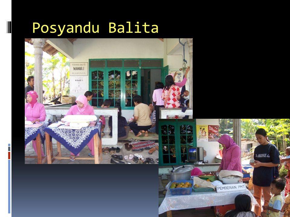 Posyandu Balita