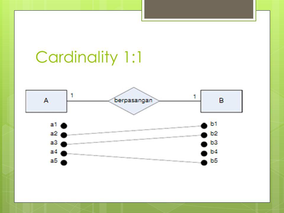Cardinality 1:1