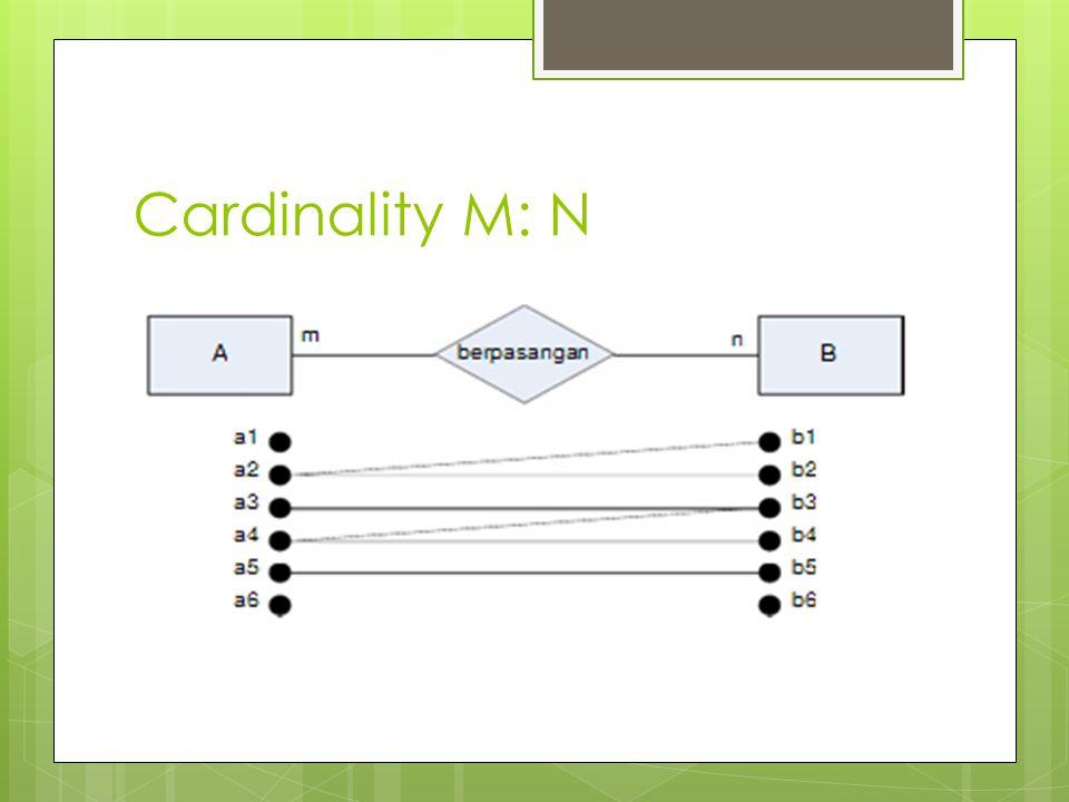 Cardinality M: N