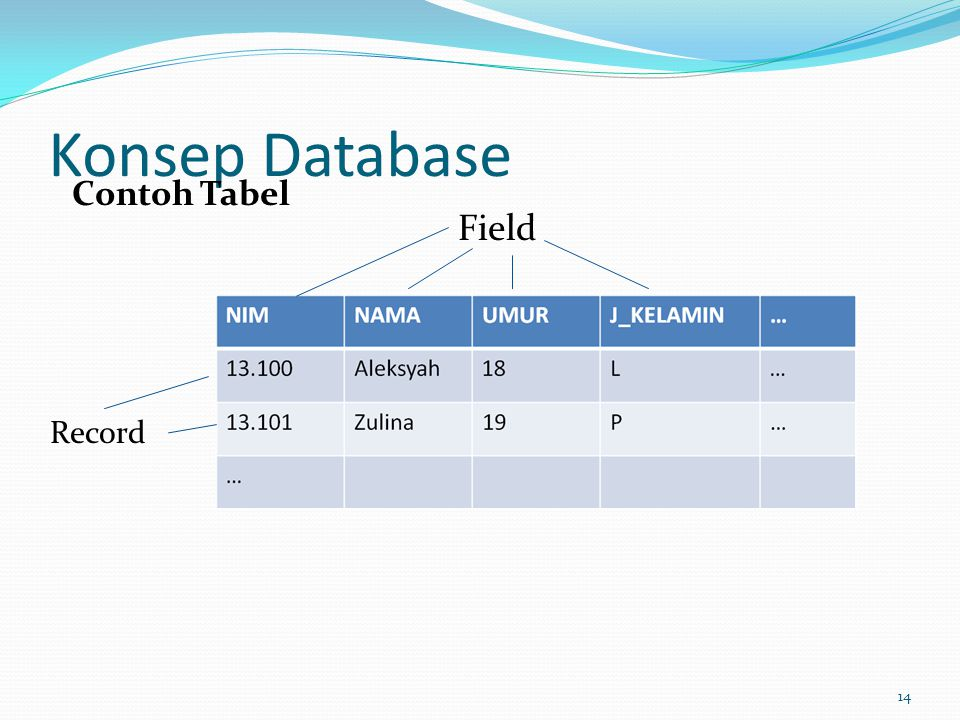 Konsep Database Contoh Tabel Field Record