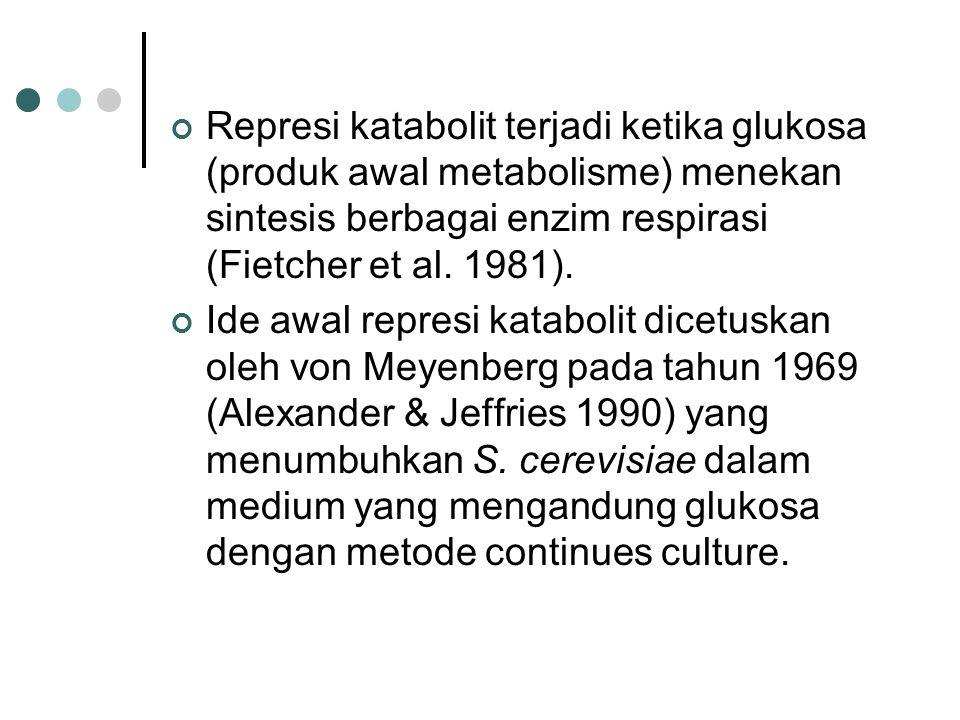 Represi katabolit terjadi ketika glukosa (produk awal metabolisme) menekan sintesis berbagai enzim respirasi (Fietcher et al. 1981).