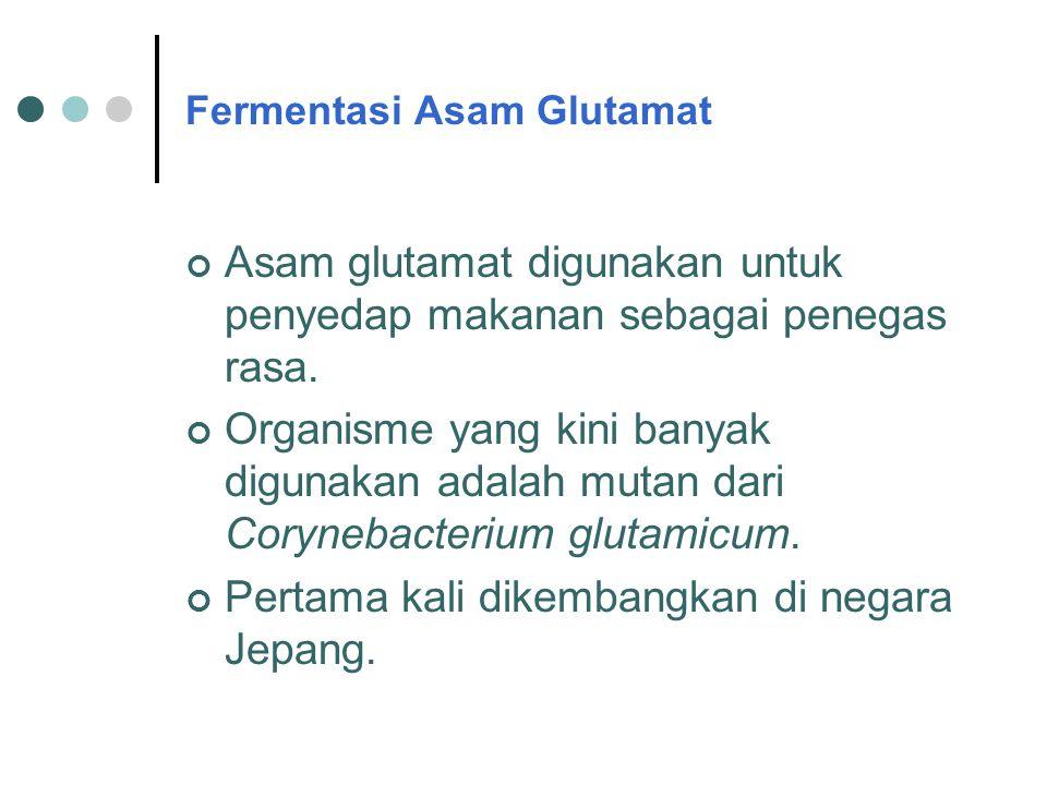 Fermentasi Asam Glutamat
