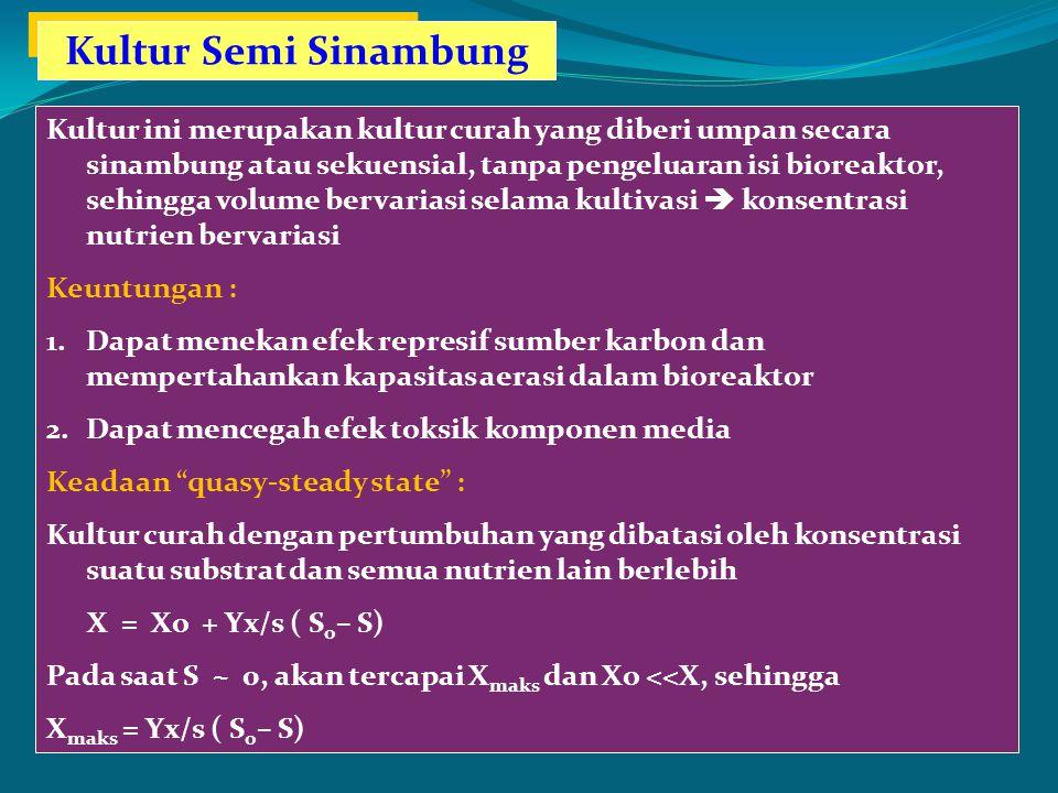 Kultur Semi Sinambung
