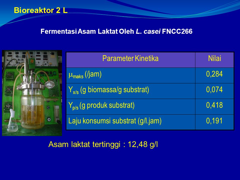 Yx/s (g biomassa/g substrat) 0,074 Yp/s (g produk substrat) 0,418