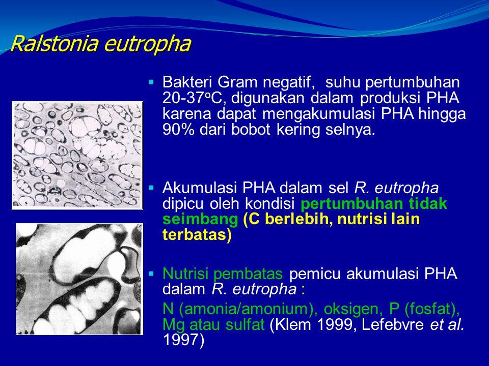 Ralstonia eutropha