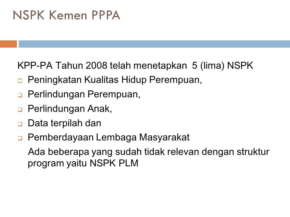 NSPK Kemen PPPA KPP-PA Tahun 2008 telah menetapkan 5 (lima) NSPK