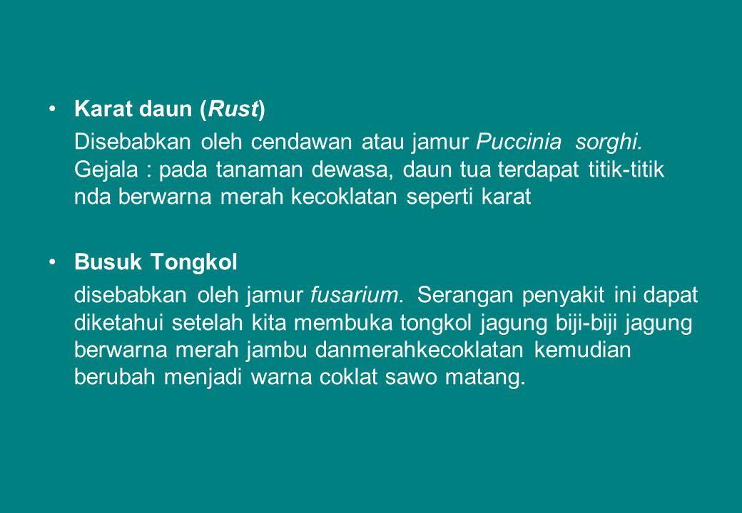 Karat daun (Rust)