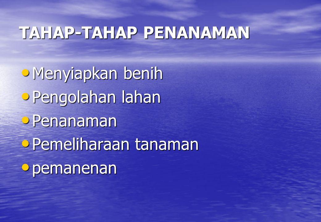 TAHAP-TAHAP PENANAMAN