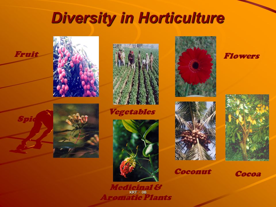Diversity in Horticulture