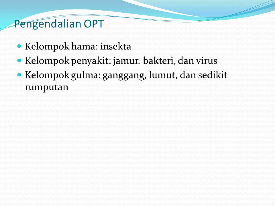 Pengendalian OPT Kelompok hama: insekta