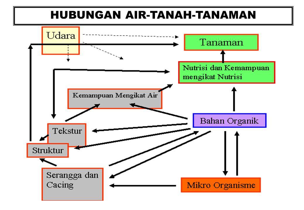 HUBUNGAN AIR-TANAH-TANAMAN