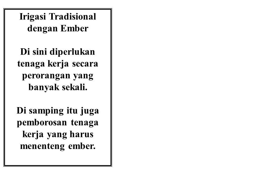 Irigasi Tradisional dengan Ember