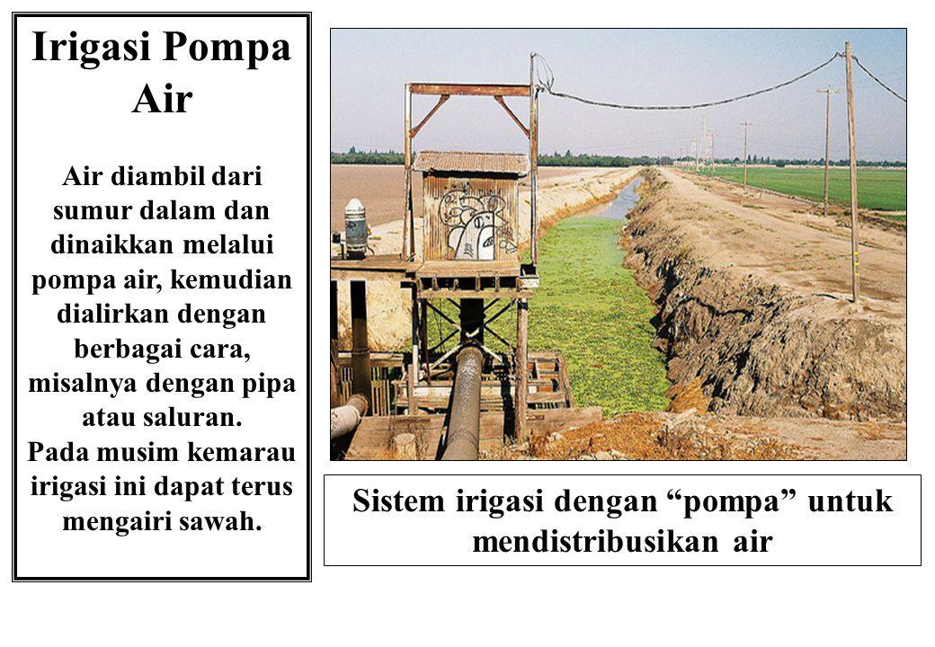 Irigasi Pompa Air