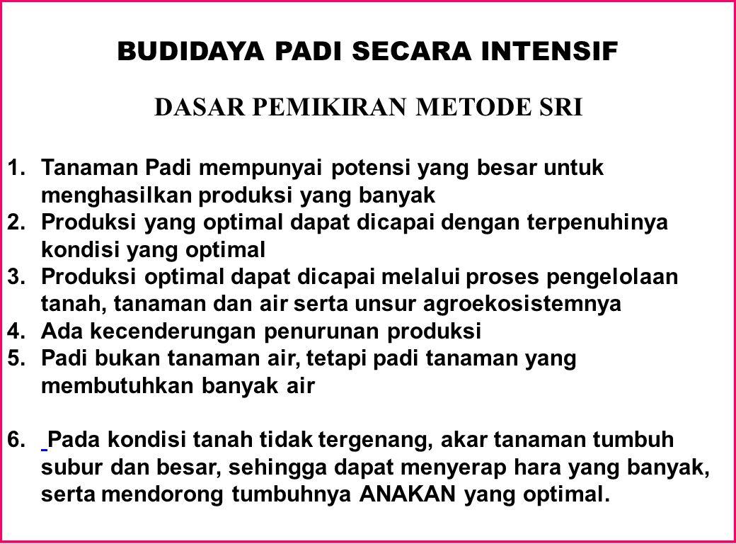 BUDIDAYA PADI SECARA INTENSIF DASAR PEMIKIRAN METODE SRI