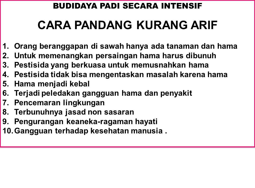 BUDIDAYA PADI SECARA INTENSIF CARA PANDANG KURANG ARIF