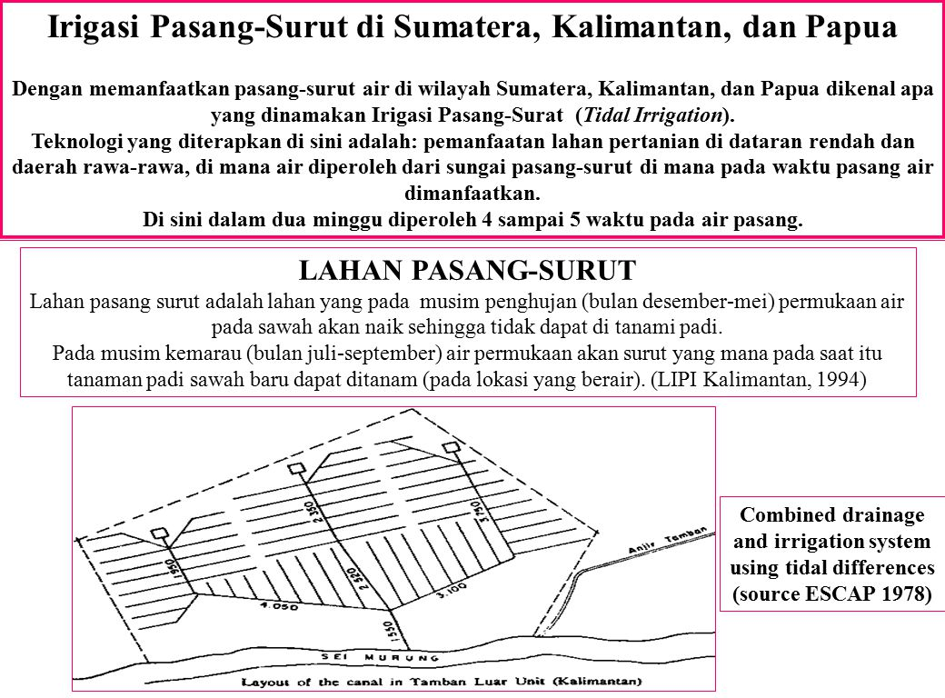Irigasi Pasang-Surut di Sumatera, Kalimantan, dan Papua