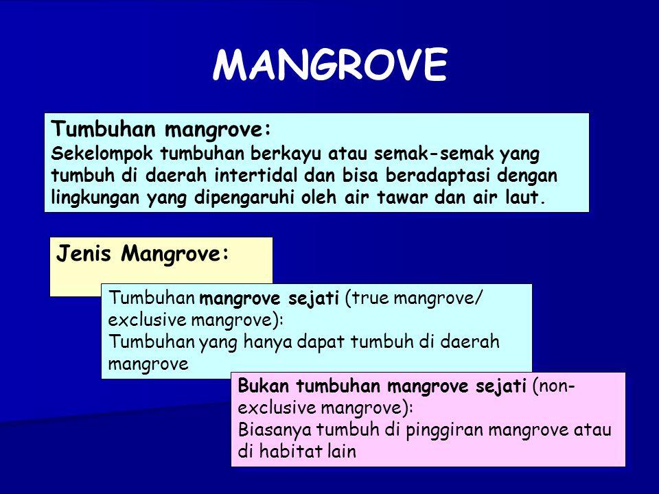 MANGROVE Tumbuhan mangrove: Jenis Mangrove: