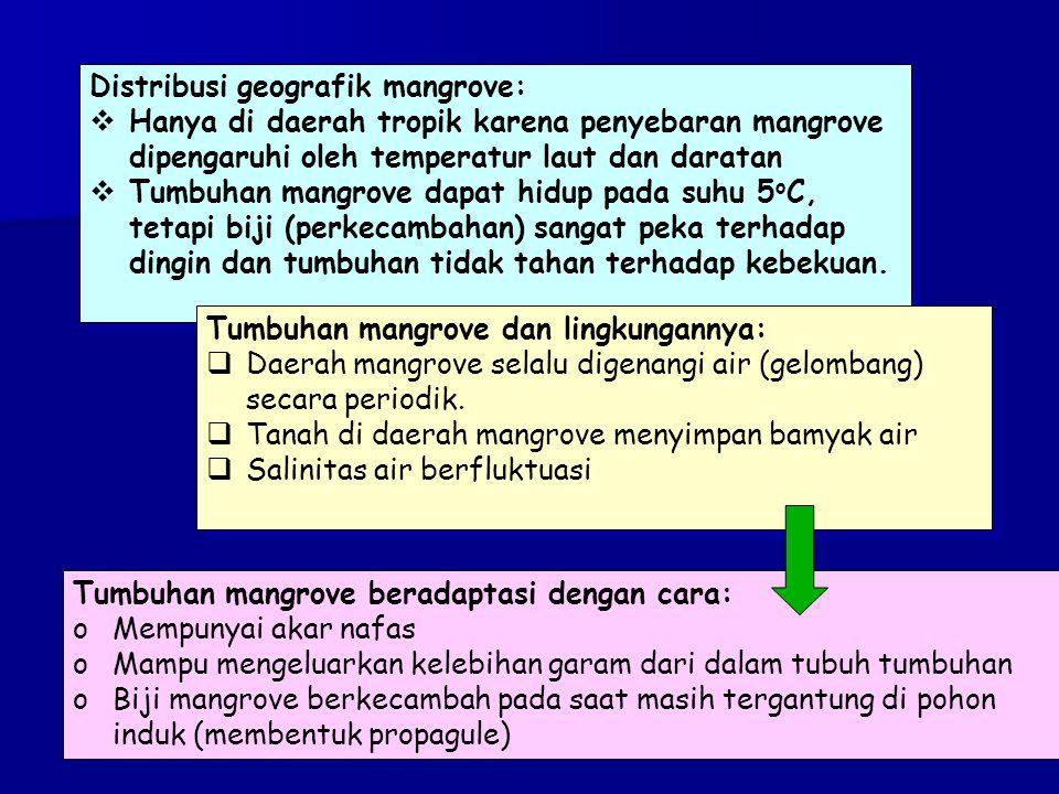 Distribusi geografik mangrove: