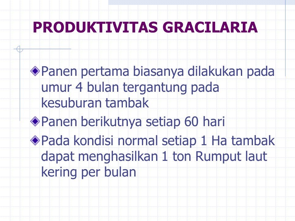 PRODUKTIVITAS GRACILARIA