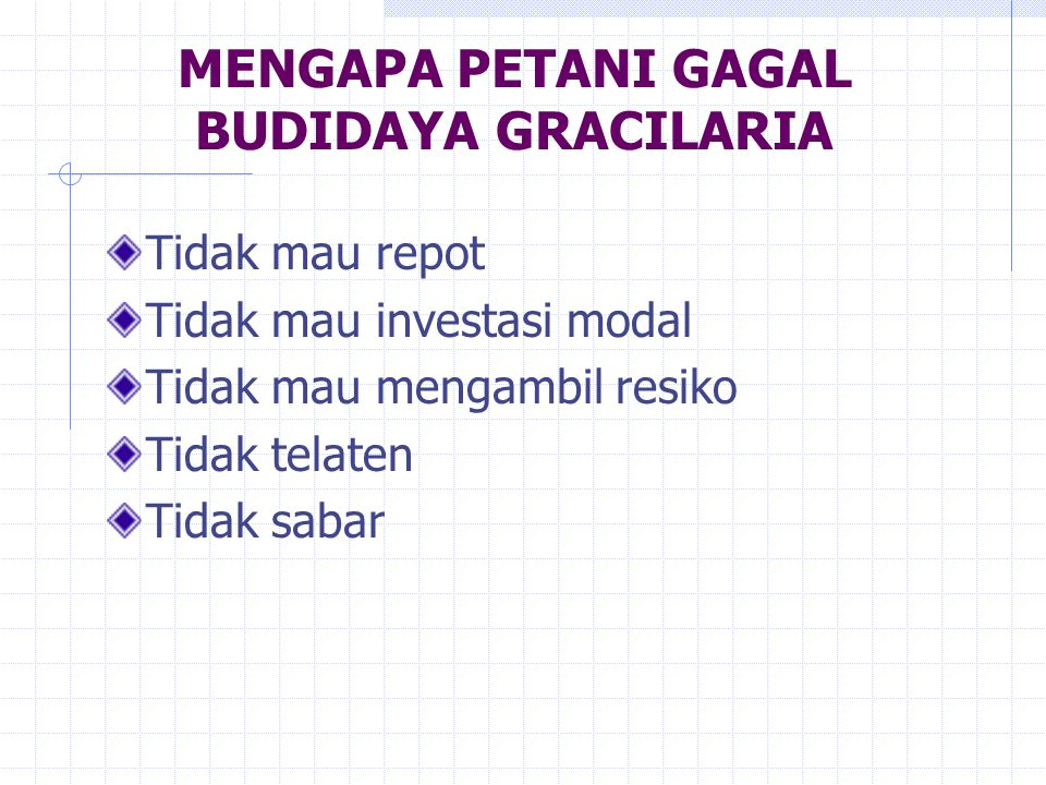 MENGAPA PETANI GAGAL BUDIDAYA GRACILARIA