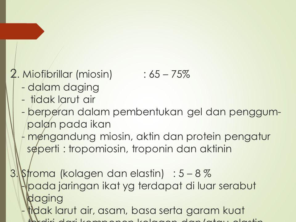 2. Miofibrillar (miosin)