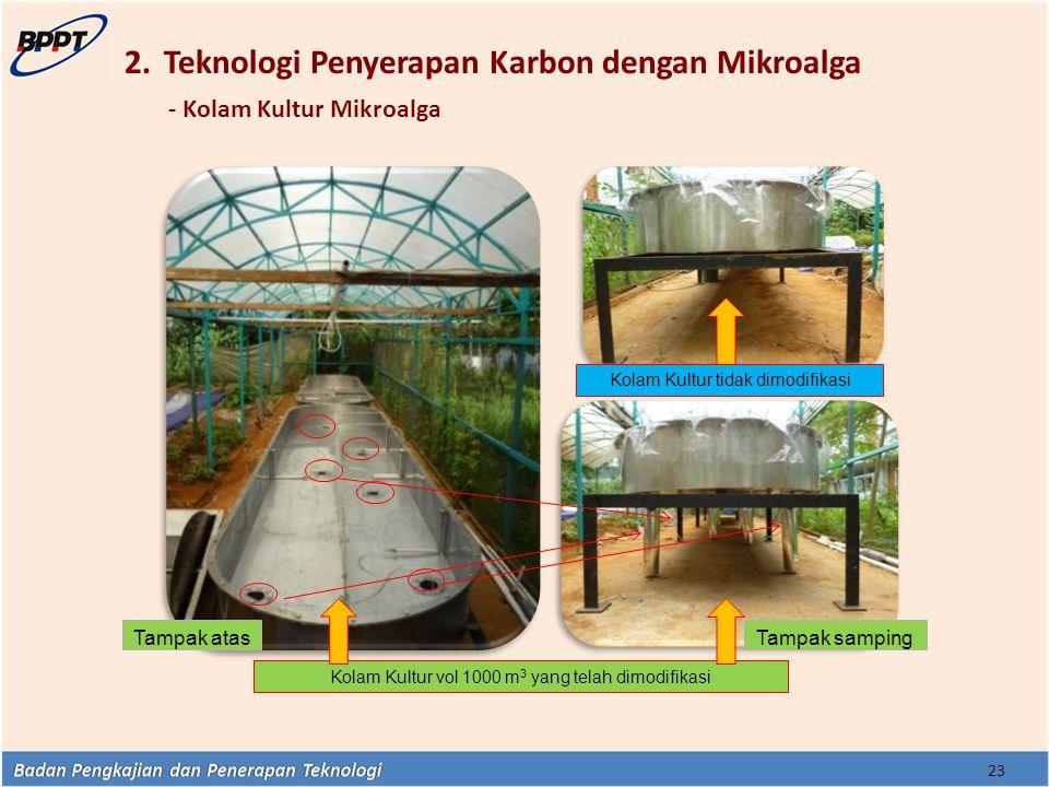 Teknologi Penyerapan Karbon dengan Mikroalga