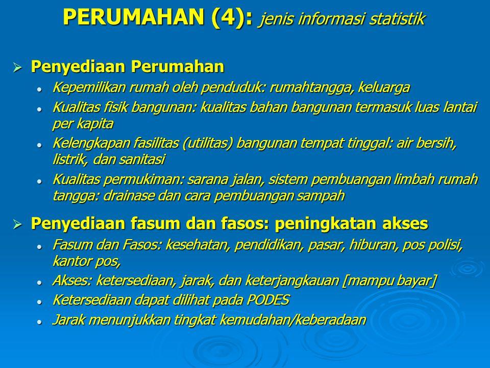 PERUMAHAN (4): jenis informasi statistik