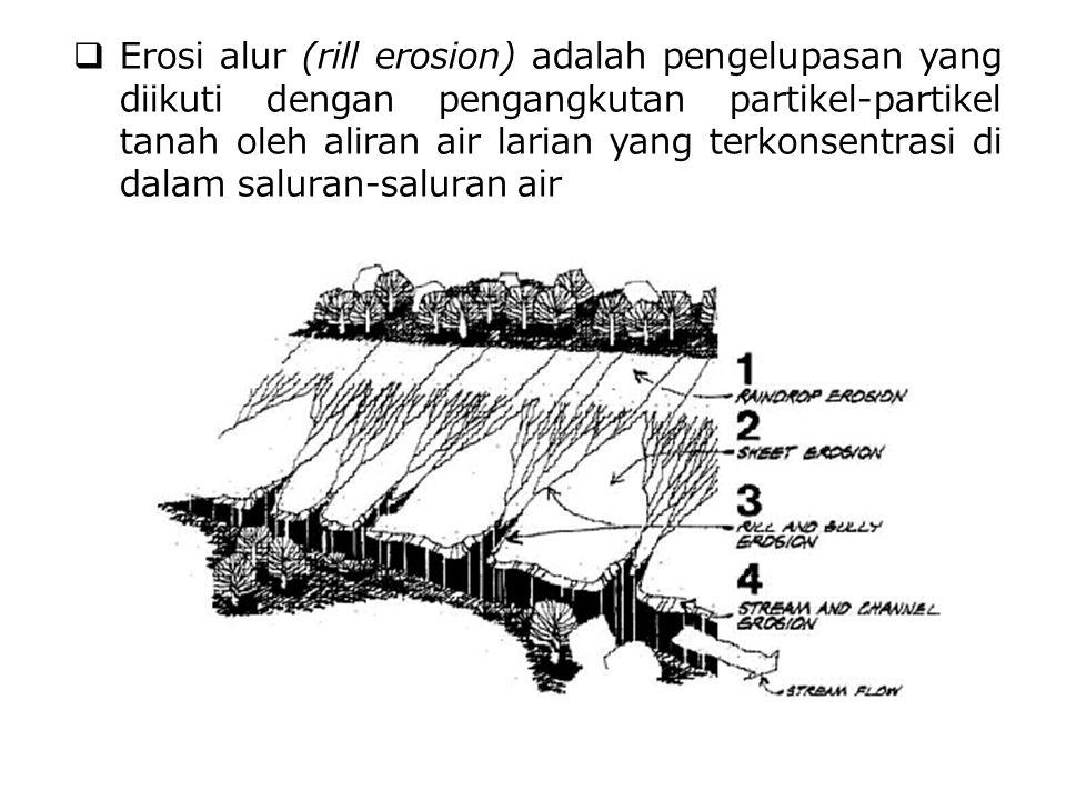 Erosi alur (rill erosion) adalah pengelupasan yang diikuti dengan pengangkutan partikel-partikel tanah oleh aliran air larian yang terkonsentrasi di dalam saluran-saluran air