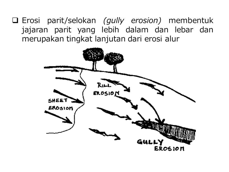 Erosi parit/selokan (gully erosion) membentuk jajaran parit yang lebih dalam dan lebar dan merupakan tingkat lanjutan dari erosi alur