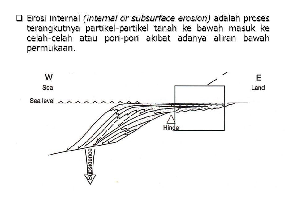 Erosi internal (internal or subsurface erosion) adalah proses terangkutnya partikel-partikel tanah ke bawah masuk ke celah-celah atau pori-pori akibat adanya aliran bawah permukaan.