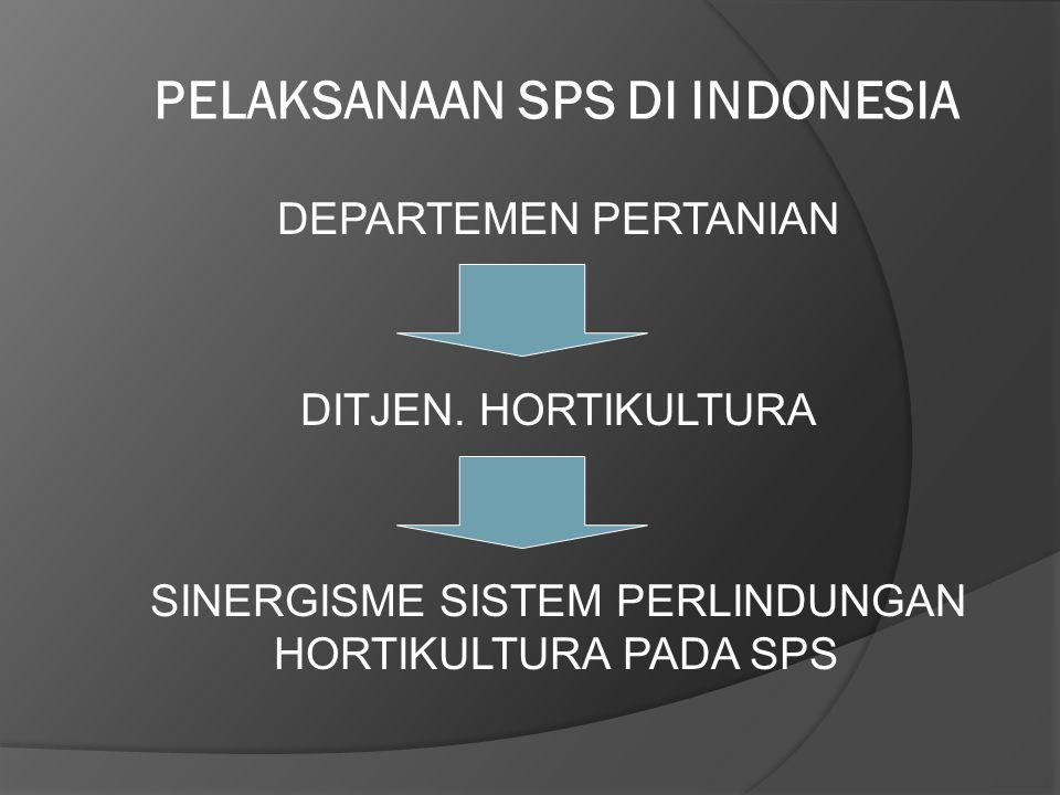 PELAKSANAAN SPS DI INDONESIA