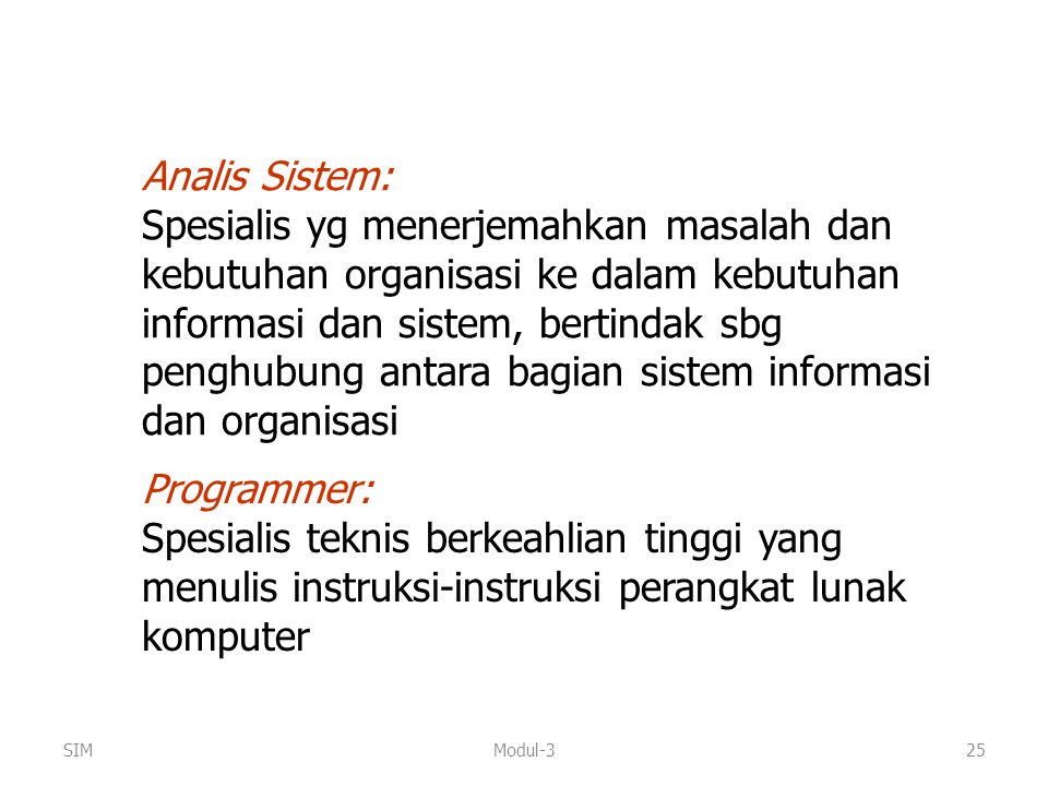 Analis Sistem: