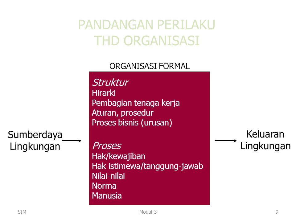 PANDANGAN PERILAKU THD ORGANISASI Struktur Proses Sumberdaya Keluaran
