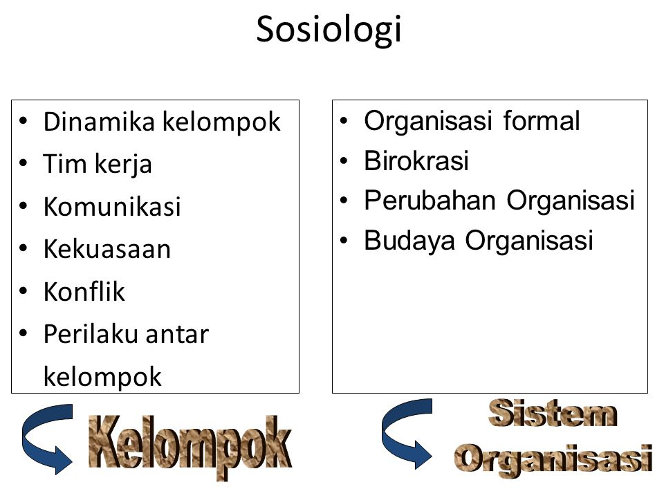 Sosiologi Sistem Organisasi Kelompok Dinamika kelompok Tim kerja