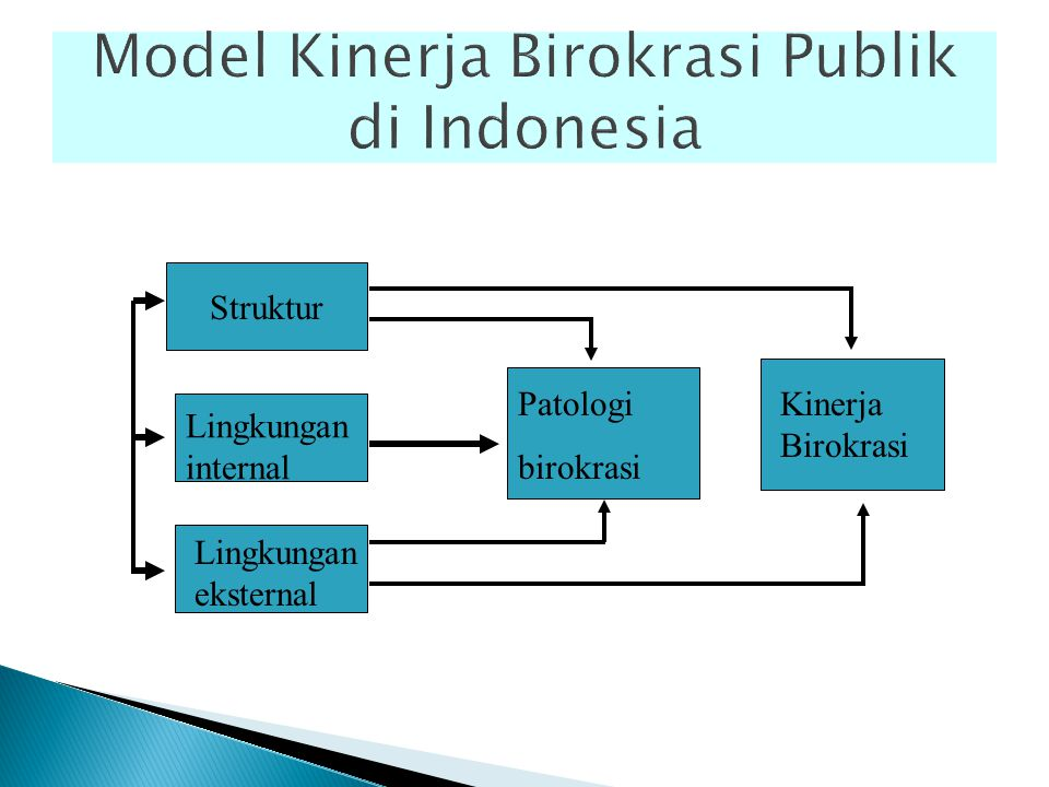 Model Kinerja Birokrasi Publik di Indonesia