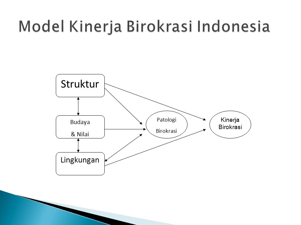 Model Kinerja Birokrasi Indonesia