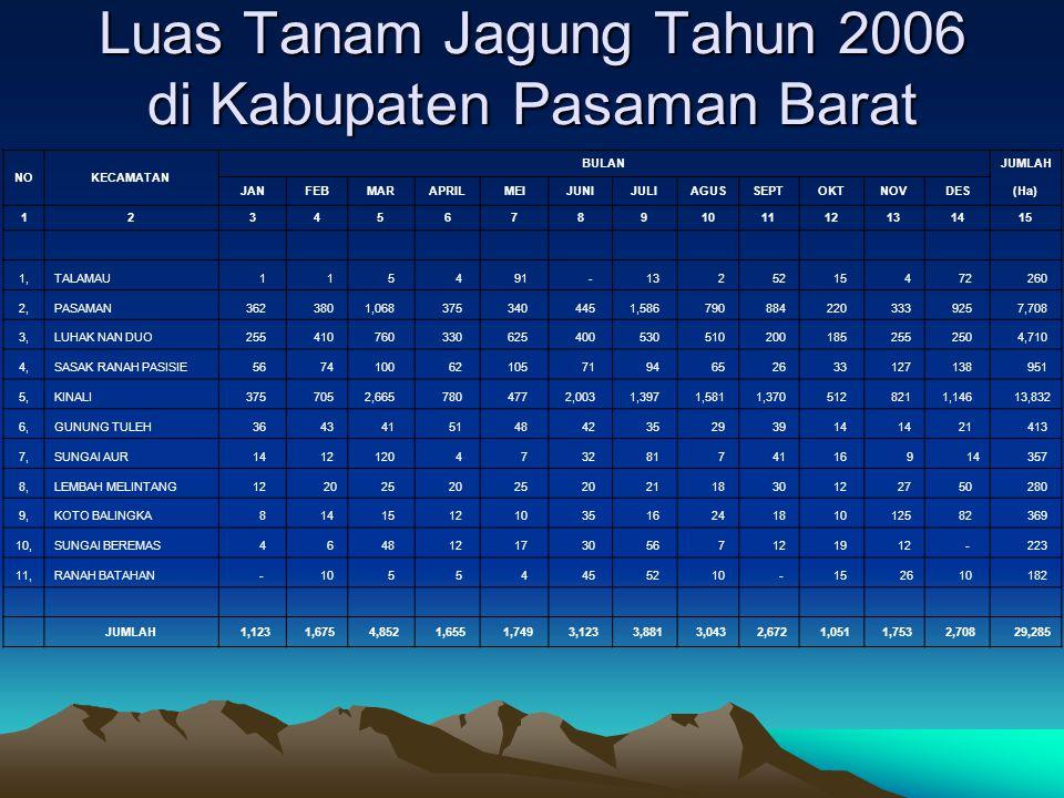 Luas Tanam Jagung Tahun 2006 di Kabupaten Pasaman Barat