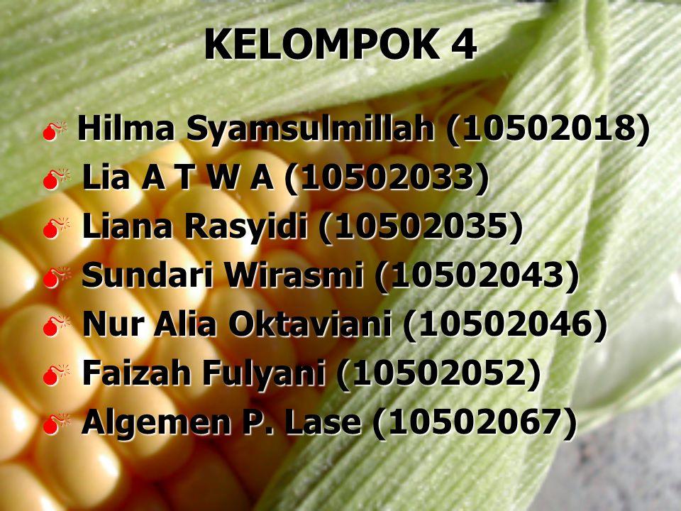 KELOMPOK 4 Lia A T W A (10502033) Liana Rasyidi (10502035)