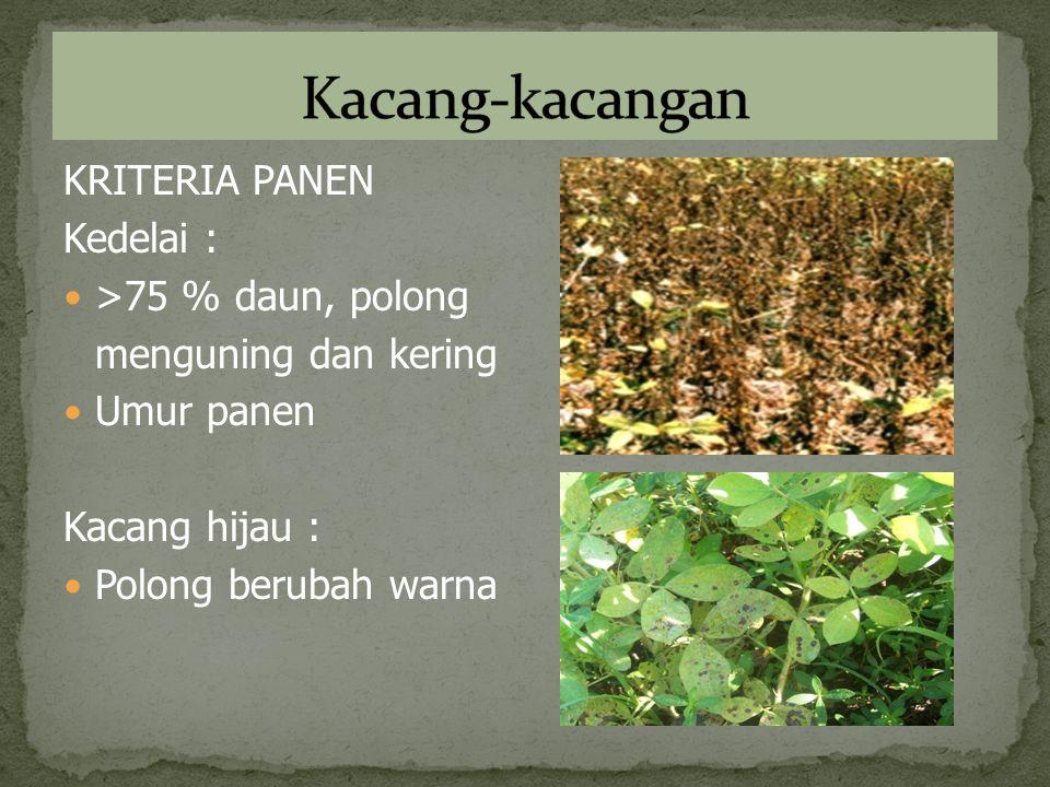 Kacang-kacangan KRITERIA PANEN Kedelai : >75 % daun, polong