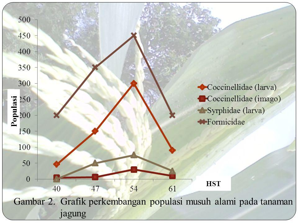 Gambar 2. Grafik perkembangan populasi musuh alami pada tanaman jagung