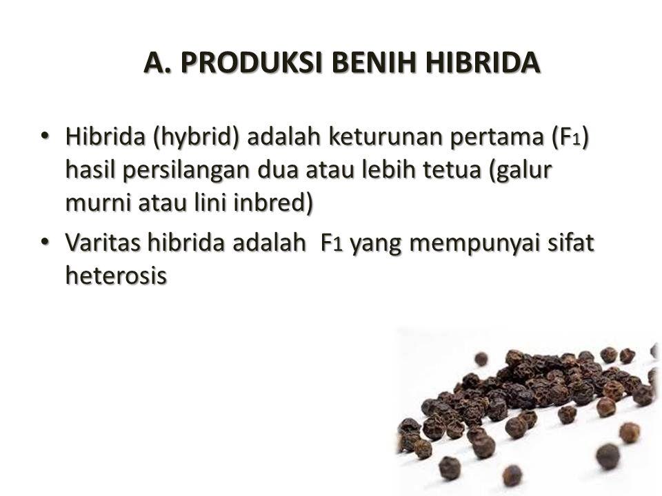A. PRODUKSI BENIH HIBRIDA