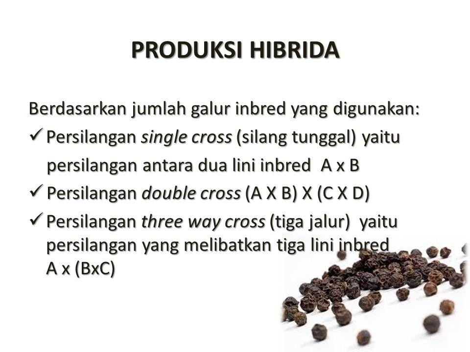 PRODUKSI HIBRIDA Berdasarkan jumlah galur inbred yang digunakan: