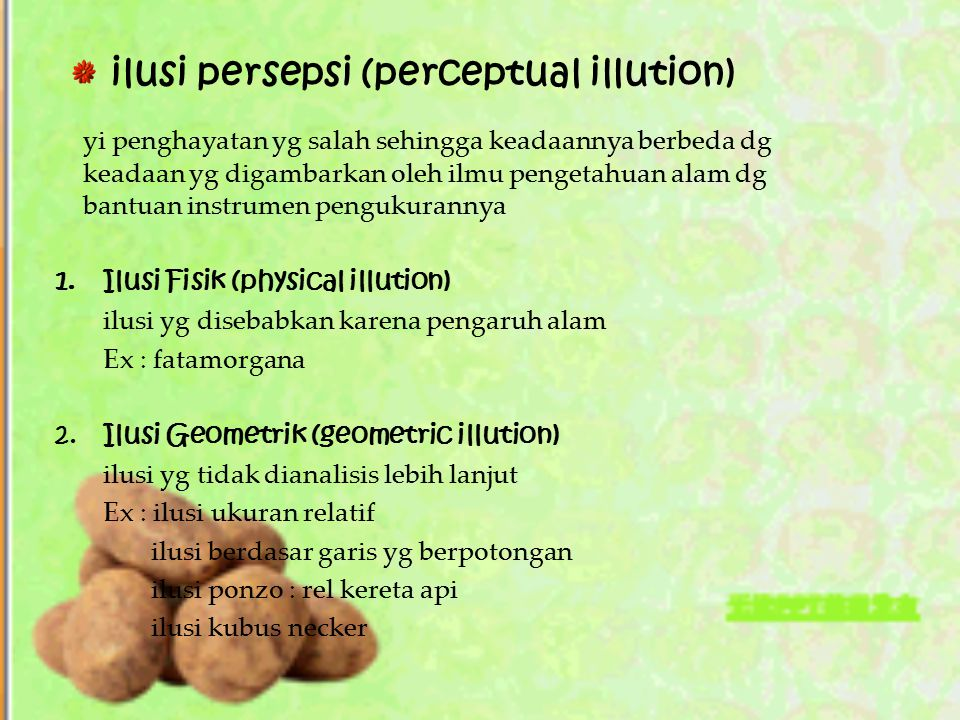 ilusi persepsi (perceptual illution)