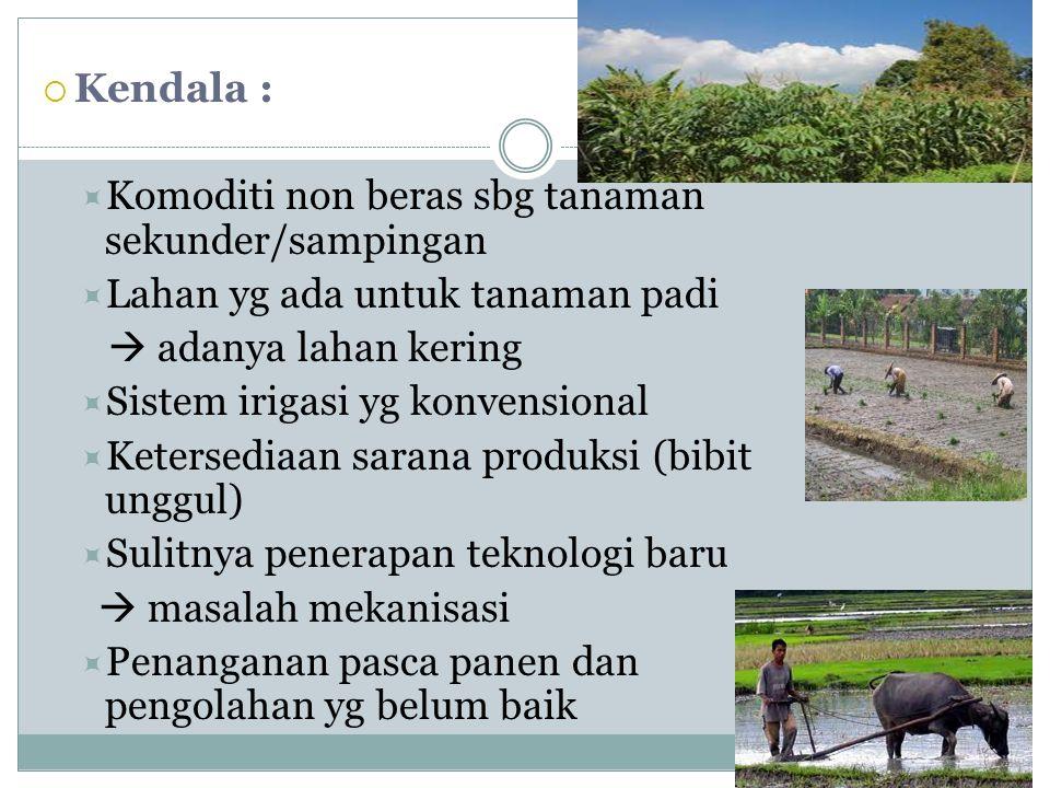 Kendala : Komoditi non beras sbg tanaman sekunder/sampingan. Lahan yg ada untuk tanaman padi.  adanya lahan kering.